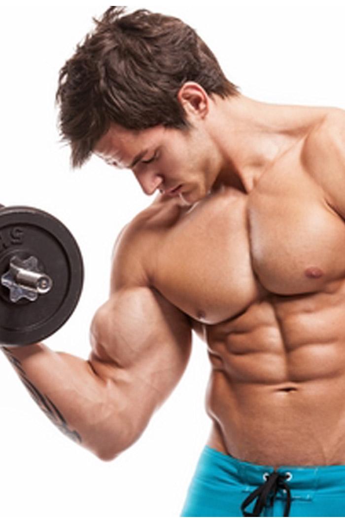 store muskler