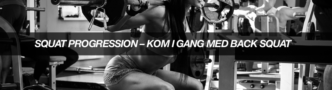 article-1SQUATPROGRESSIONKOMIGANGMEDBACKSQUAT-bodyman